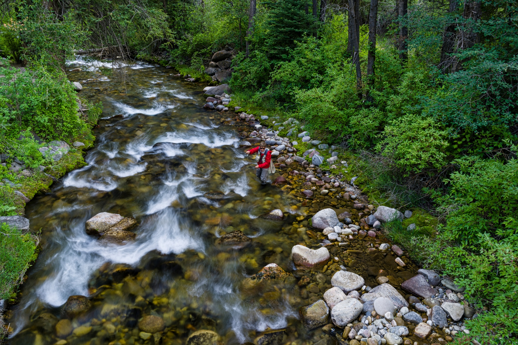 Man Fly Fishing in Crystal Clear Creek